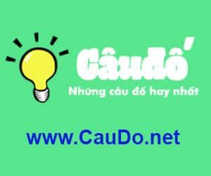 caudo.net
