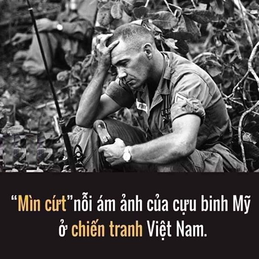 min-cut-noi-am-anh-cua-linh-my-tai-viet-nam